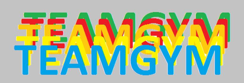 Création d'une section TEAM GYM !!